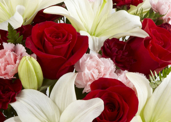 Margate, FL Flower Shop - Order flowers for same day delivery by F & S Flowers Design LLC